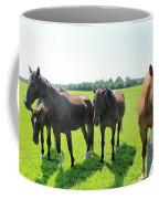 Horses In Bridgehampton Coffee Mug
