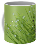 Horsetail With Dew Coffee Mug