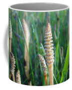 Horsetails And Dew Drops Coffee Mug
