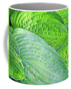 Hosta Lavista Baby Coffee Mug