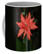 Hostal Candelaria  Coffee Mug