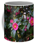 Hot Pink Camellias Glowing In The Shade Coffee Mug