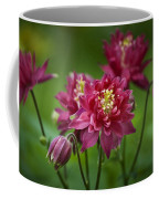 Hot Pink Columbine Coffee Mug