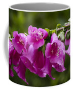 Hot Pink Foxglove Coffee Mug