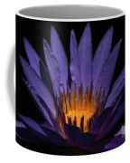 Hot Purple Water Lily Coffee Mug