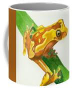 Hourglass Frog Coffee Mug