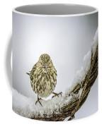 House Finch Snow Is Coming Coffee Mug by LeeAnn McLaneGoetz McLaneGoetzStudioLLCcom