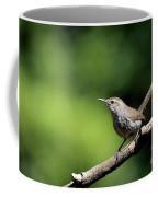 House Wren . 40d8055 Coffee Mug