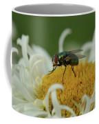 Housefly On Daisy Coffee Mug