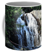 Houston Brook Falls Panorama Coffee Mug
