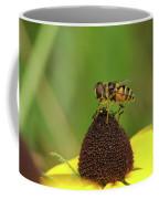 Hoverfly On Brown Eyed Susan Coffee Mug