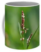 Hoverfly On Flower Coffee Mug