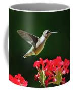 Hovering Hummingbird Coffee Mug by Christina Rollo