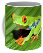 How About Some Real Color Coffee Mug