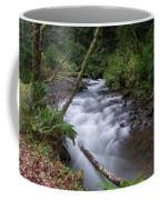 How The River Flows Coffee Mug