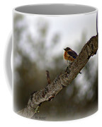 Huddled Bluebird Coffee Mug