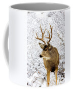 Huge Buck Deer In The Snowy Woods Coffee Mug