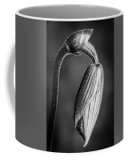 Humble Monochrome Coffee Mug
