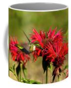 Hummer In The Bee Balm Coffee Mug