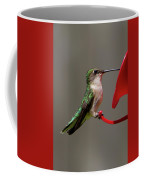 Humming Bird 8 Coffee Mug