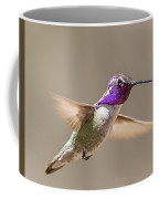 Humming Bird Freeze Frame Coffee Mug