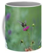 Humming Bird On A Cosmo Coffee Mug