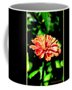 Humming Bird's Favourite Coffee Mug