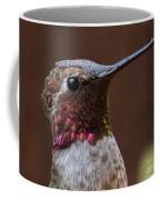 Hummingbird 16 Coffee Mug