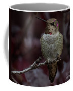 Hummingbird 17 Coffee Mug