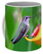 Hummingbird 32 Coffee Mug
