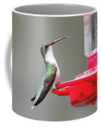 Hummingbird 33 Coffee Mug