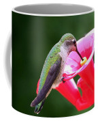 Hummingbird 33 Coffee Mug
