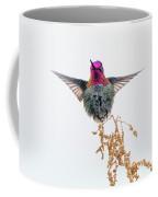 Hummingbird 7445-021418-1cr Coffee Mug