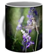 Hummingbird And Purple Lupine  Coffee Mug