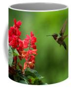 Hummingbird And Scarlet Sage Coffee Mug
