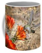 Hummingbird And The Hedgehog  Coffee Mug