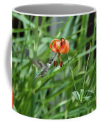 Hummingbird And Tiger Lilly Coffee Mug