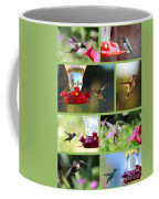 Hummingbird Collage 2 Coffee Mug