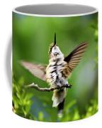 Hummingbird Happy Dance Coffee Mug