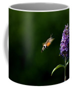 Hummingbird Hawk Moth - Three Coffee Mug