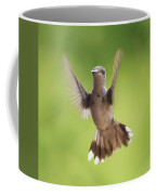 Hummingbird Hello There Coffee Mug