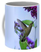 Hummingbird In Butterfly Bush Coffee Mug