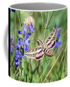 Hummingbird Moth Coffee Mug
