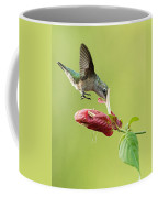 Hummingbird Nose Dive Coffee Mug