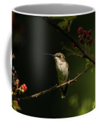 Hummingbird On Blackberry Bush Coffee Mug