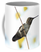 Hummingbird On Tightrope Coffee Mug