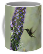 Hummingbird Sharing Coffee Mug