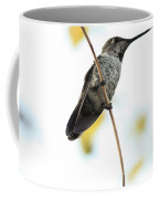 Hummingbird Tongue Coffee Mug