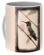 Hummingbird With Old-fashioned Frame 3 Coffee Mug