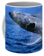 Humpback Full Breach Coffee Mug